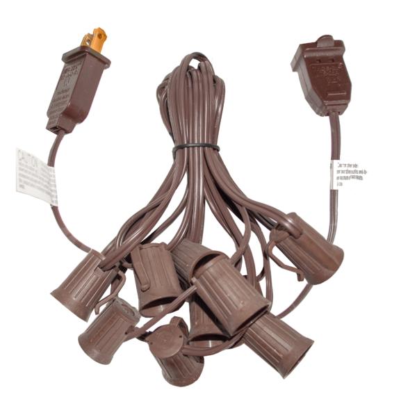 10 foot brown string light